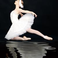 <i>Swan Lake</i>