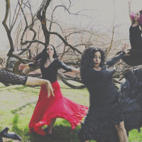 Dance Idea presents Cacophony
