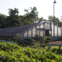 creative mornings springdale farms