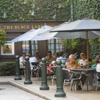 Places-Drinks-Black Labrador