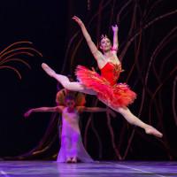 Ballet Austin presents The Firebird/Dvořák Serenade