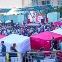 Houston Turkish Festival