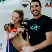 Justin Verlander Kate Upton dog adoption Minute Maid Park