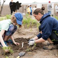 Little Hummingbird Society: Kids Park Project
