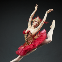 Texas Ballet Theater, Firebird