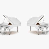 15 Composers: 2 Pianos