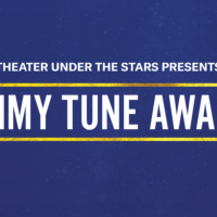 <i>17th Annual Tommy Tune Awards</i>