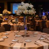 Spring for Hope Gala