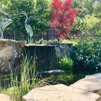 Hidden Gardens Tour, Garden 3
