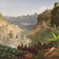 Justin Favela: Puente Nuevo