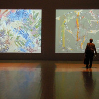 """Amon Carter Museum of American Art presents """"Set in Motion: Camille Utterback and Art That Moves"""""""