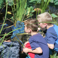 John Bunker Sands Wetland Center presents Family Fun Days