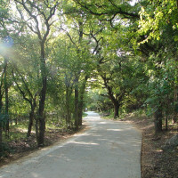 San Antonio trail