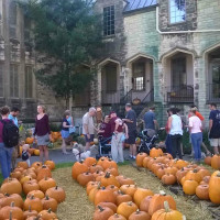 St. Mark's United Methodist Church Fall Festival and Pumpkin Patch