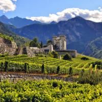 Aosta Valley Region Wine Dinner