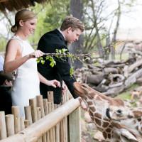 Watson Sullivan wedding