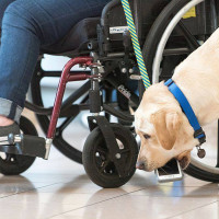 Canine Companions for Independence Open House
