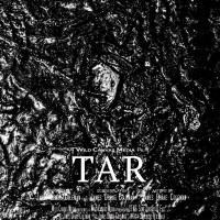 TAR: Some Origins of Evil