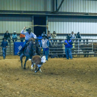 2nd Annual George Ranch Rodeo