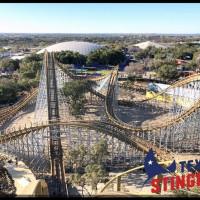 Texas Stingray San Antonio SeaWorld