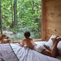 Getaway tiny cabins big window