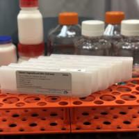 COVID-19 antibody test laboratory