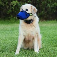 k9 mask dog face mask