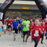 : Run 365 LLC presents Jingle All The 5K, 10K, 1K