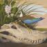 ": Amon Carter Museum of American Art presents ""Seeing in Detail: Scott and Stuart Gentling's Birds of Texas"""