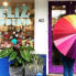 Brandon Watson: Colorful San Antonio gift shop pops into Pearl to launch new concept
