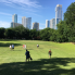 Brandon Watson: Award-winning Austin chef swings in to transform beloved community golf course