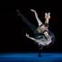 Steven Devadanam: Houston Ballet cancels 2019-2020 season amid coronavirus concerns