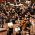 Lindsey Wilson: San Antonio Symphony cancels performances through January 2021