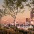 Steven Devadanam: Houston's biggest rooftop garden blossoms with striking new events venue