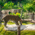Steven Devadanam: Houston Zoo goes wild with exotic new South American experience