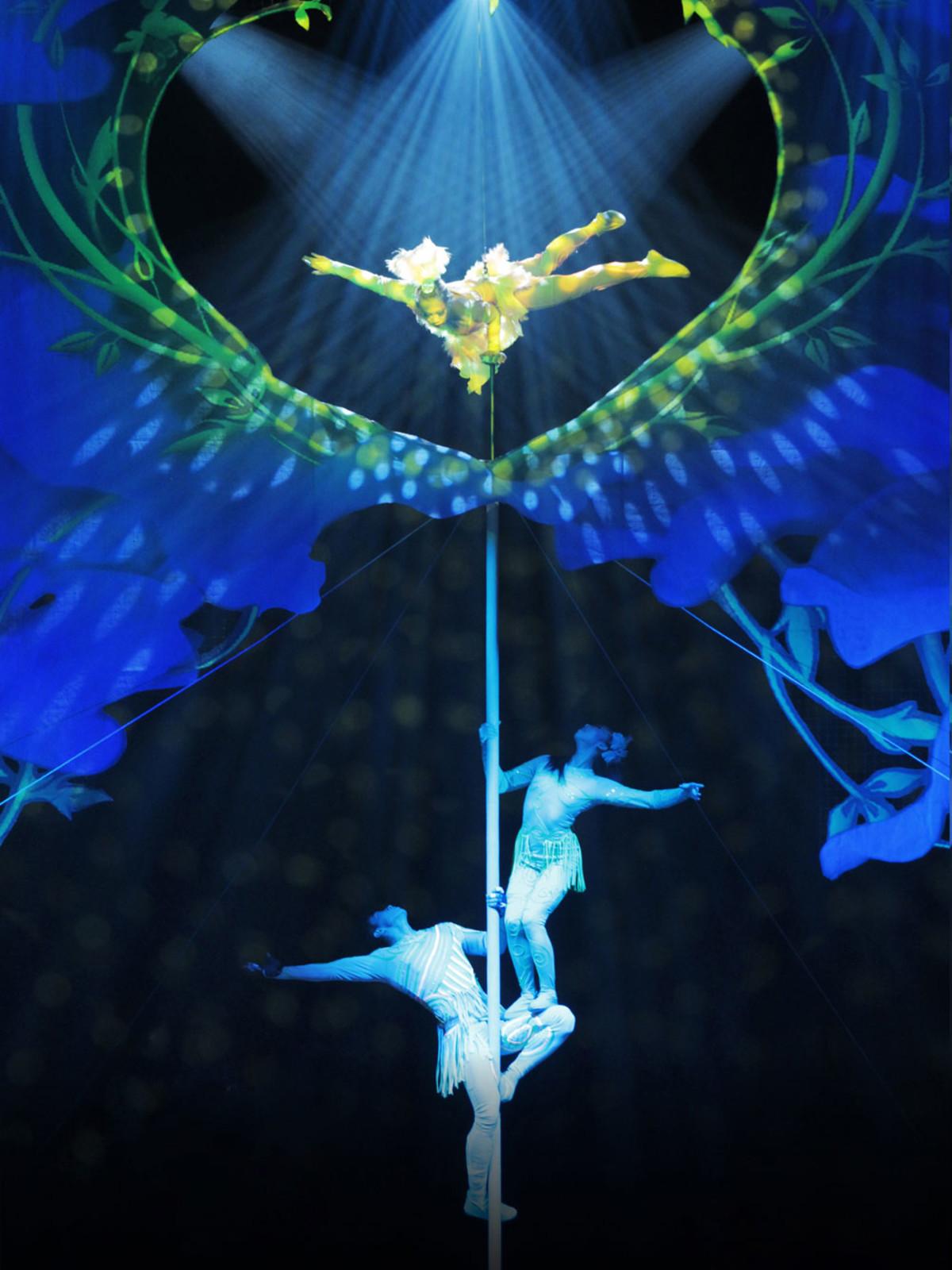National Acrobats of China