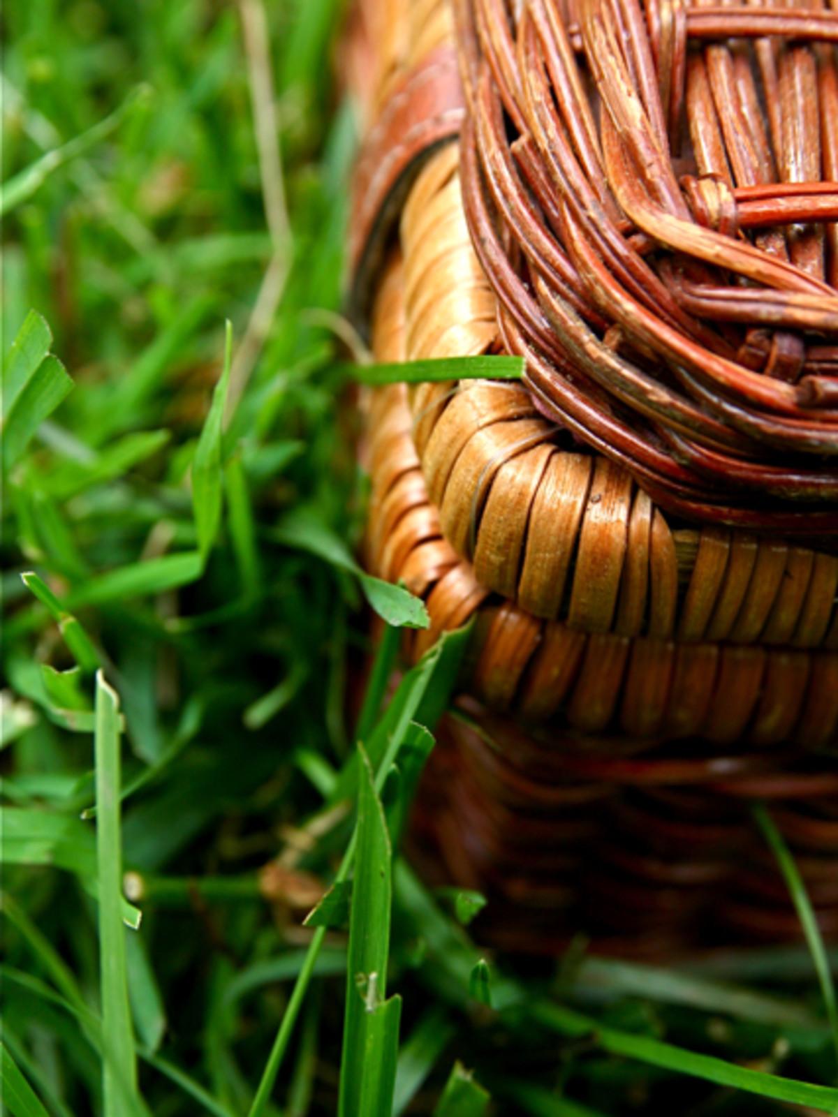 News_Summer fun_picnic basket_grass_placeholder