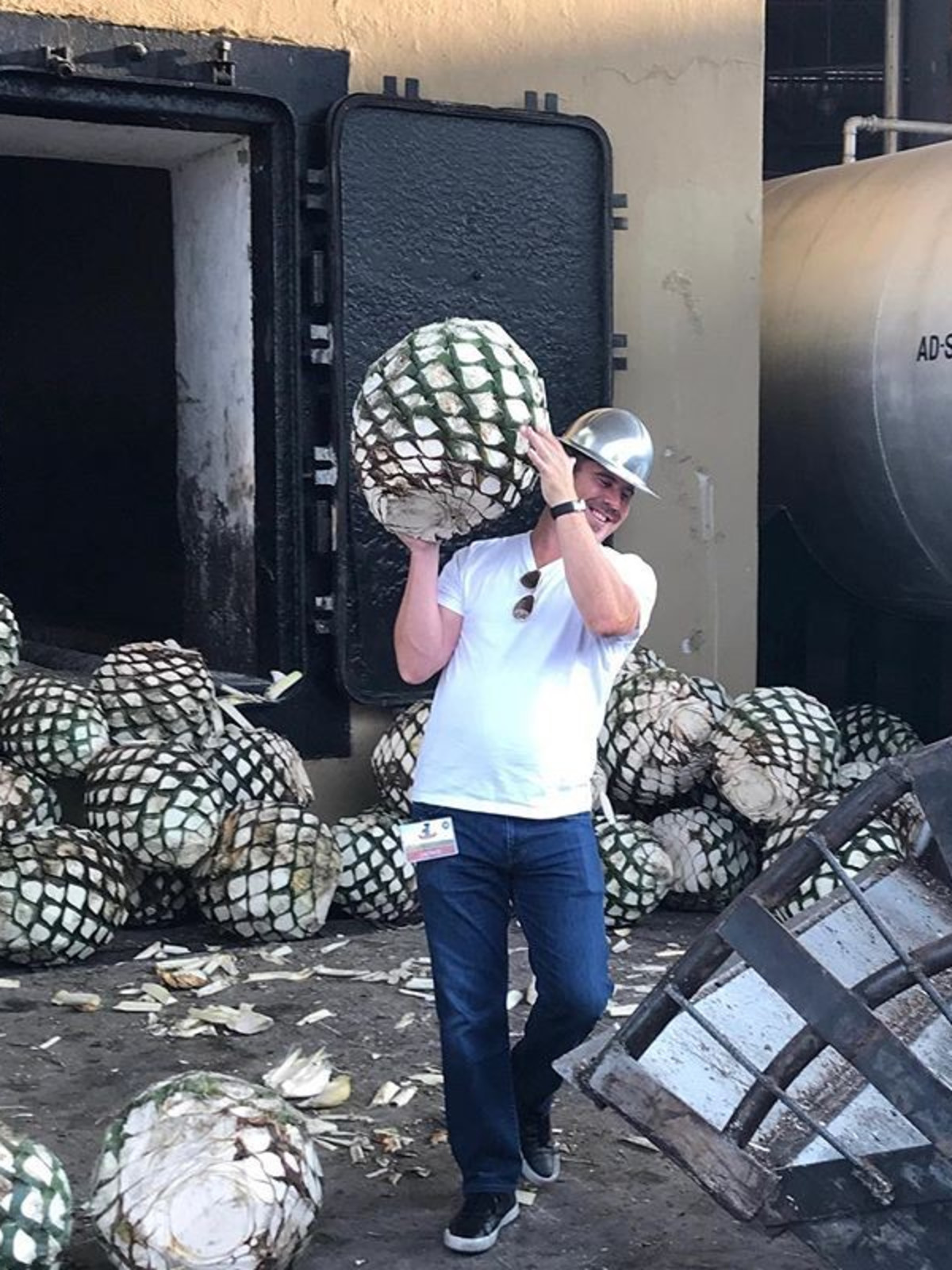 Man hauling agave