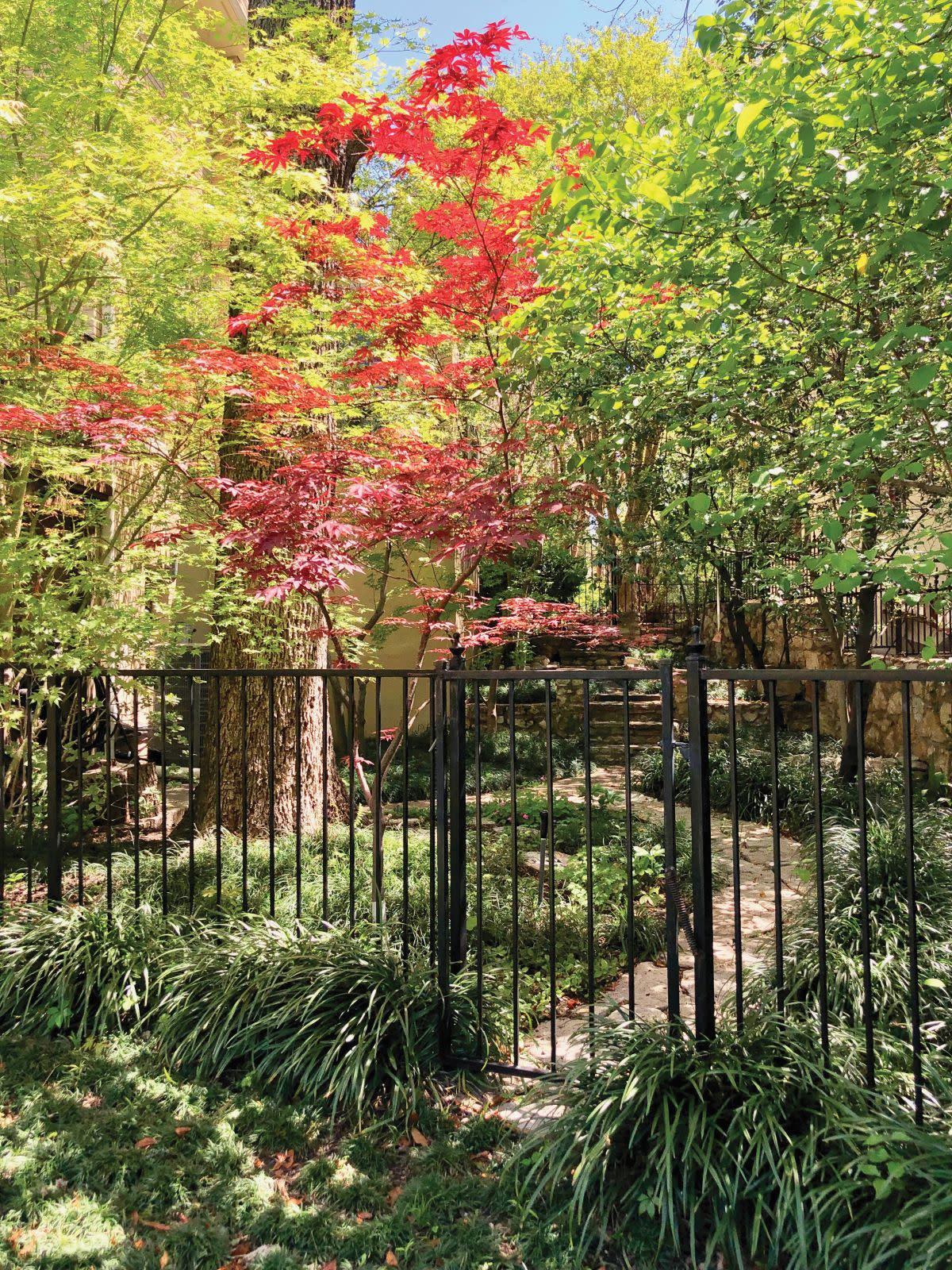 Hidden Gardens Tour, Garden 5