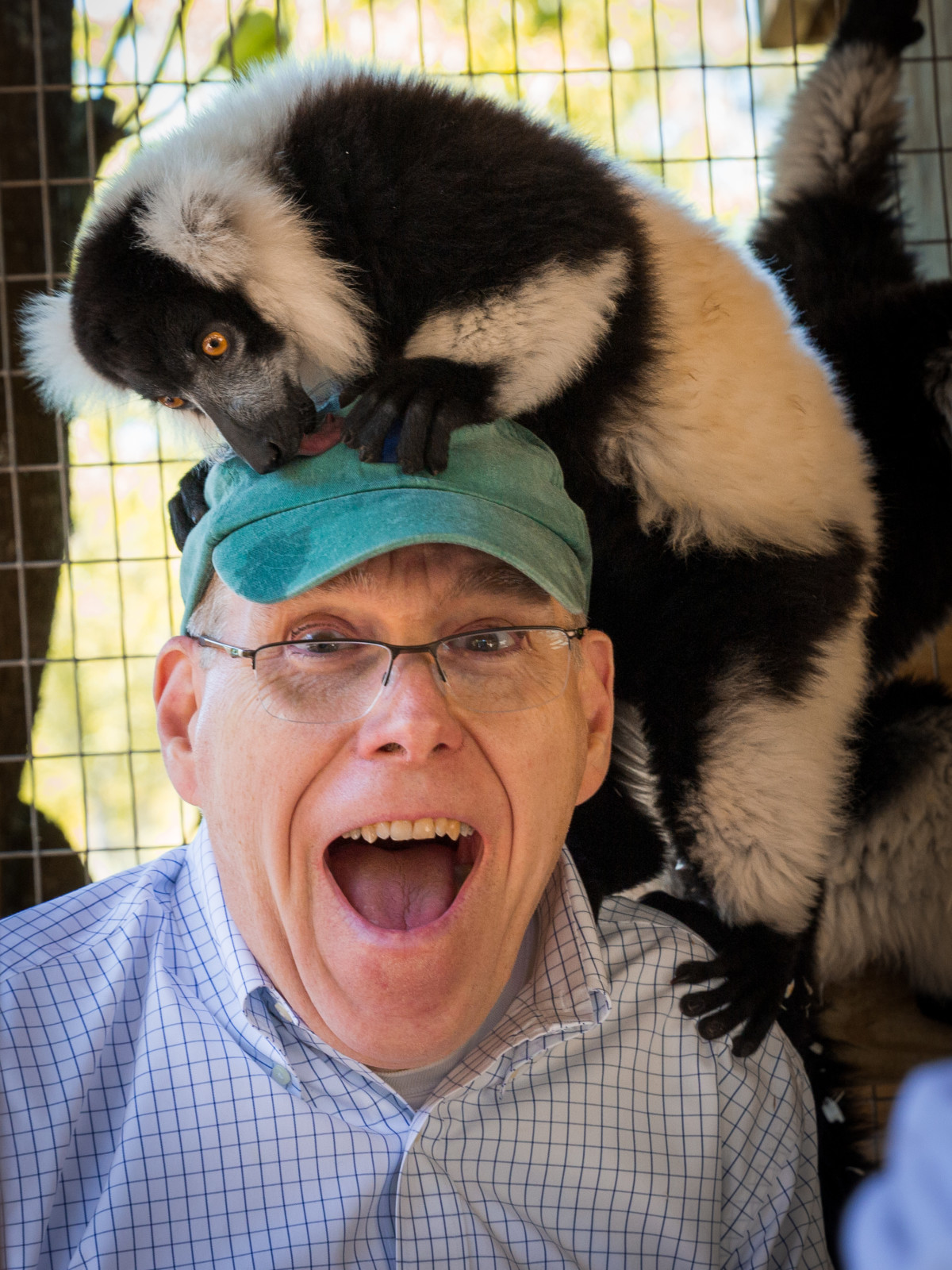 Man with a lemur on his head