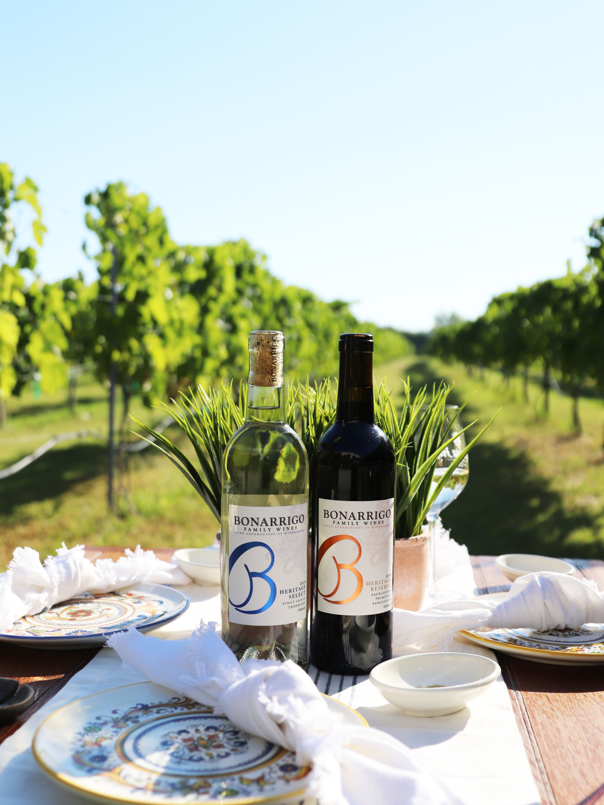 Messina Hof Bonarrigo Family Wines collection