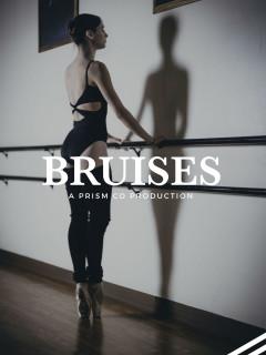 PrismCo presents Bruises: Animal vs. Machine