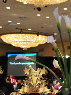 """""""Night with the Stars Gala 2015"""" benefiting The Latino Learning Center"""