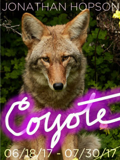 Jonathan Hopson Gallery presents Coyote