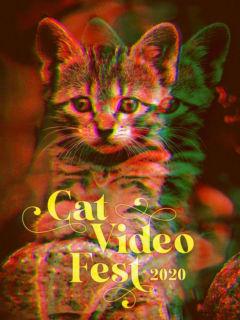 Catvideofest 2020