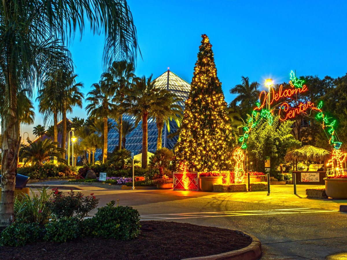 Moody Gardens Galveston festival of lights