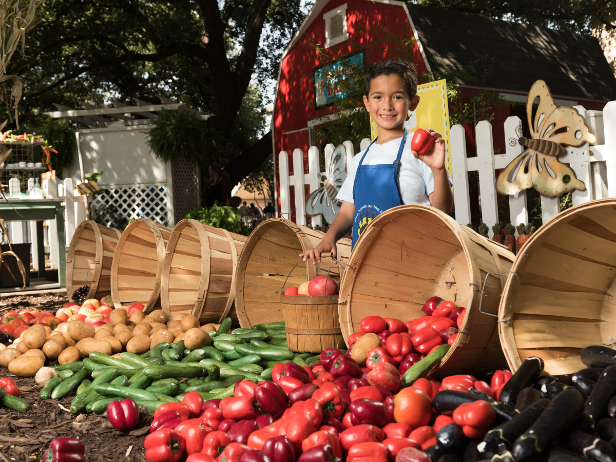 State Fair of Texas Little Hands on the Farm