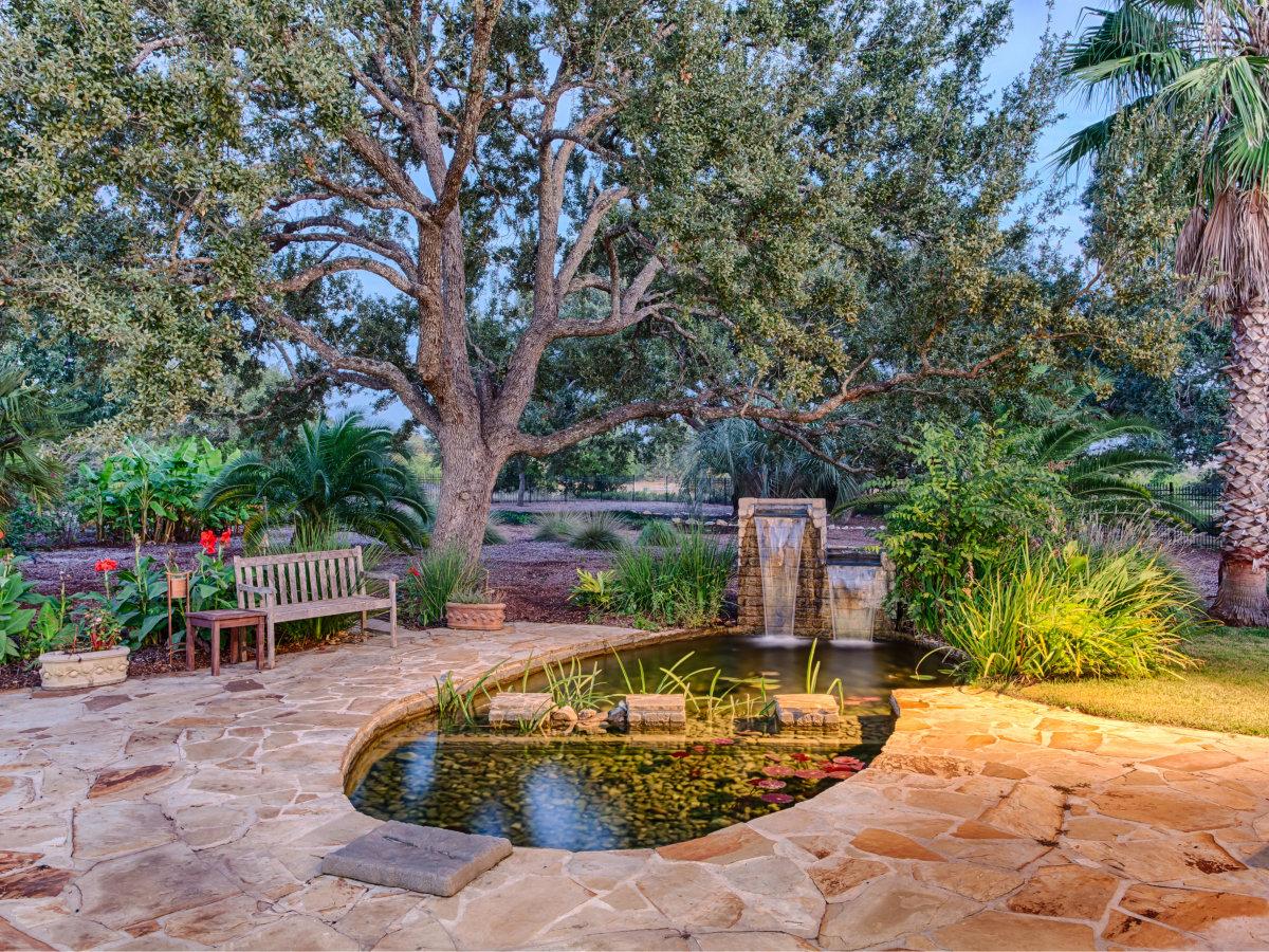 22334 Angostura San Antonio house for sale backyard