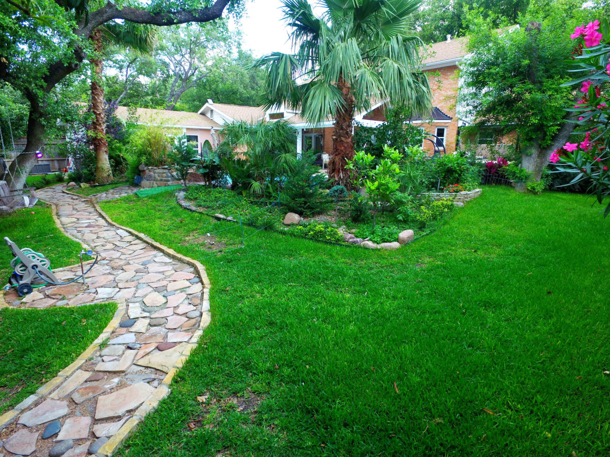 227 Treasure Way San Antonio house for sale bakcyard