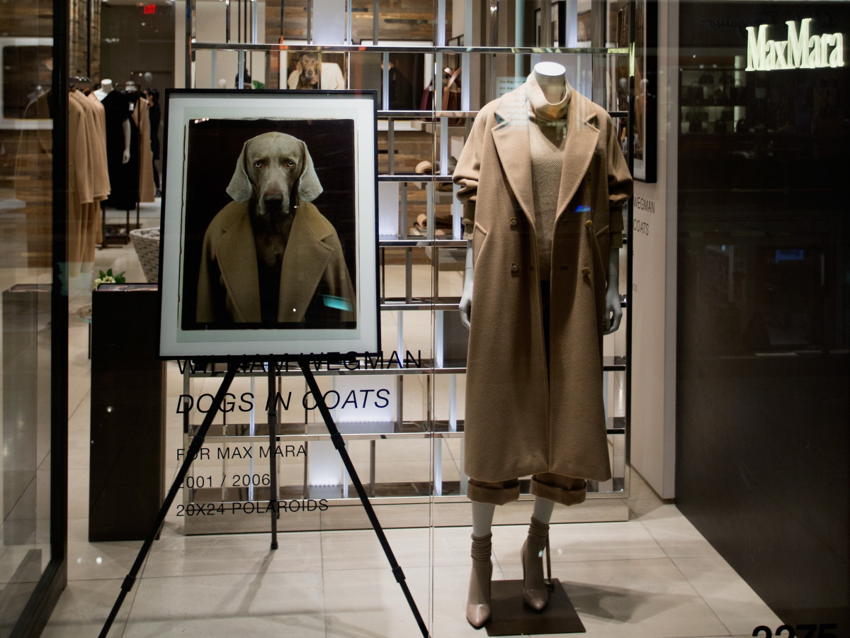 Max Mara William Wegman event store front